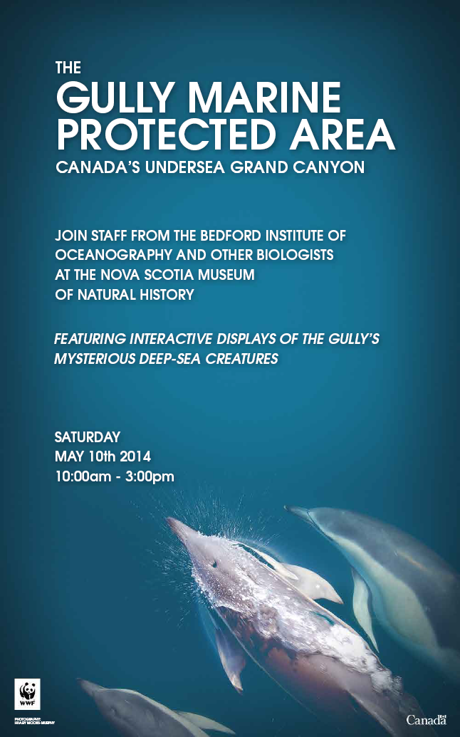 The Gully Marine Protected Area: Canada's Undersea Grand Canyon. Join staff from the Bedford Institute of Oceanography and other biologists at the Nova Scotia Museum of Natural History. Featuring interactive displays of the gully's mysterious deep-sea creatures.