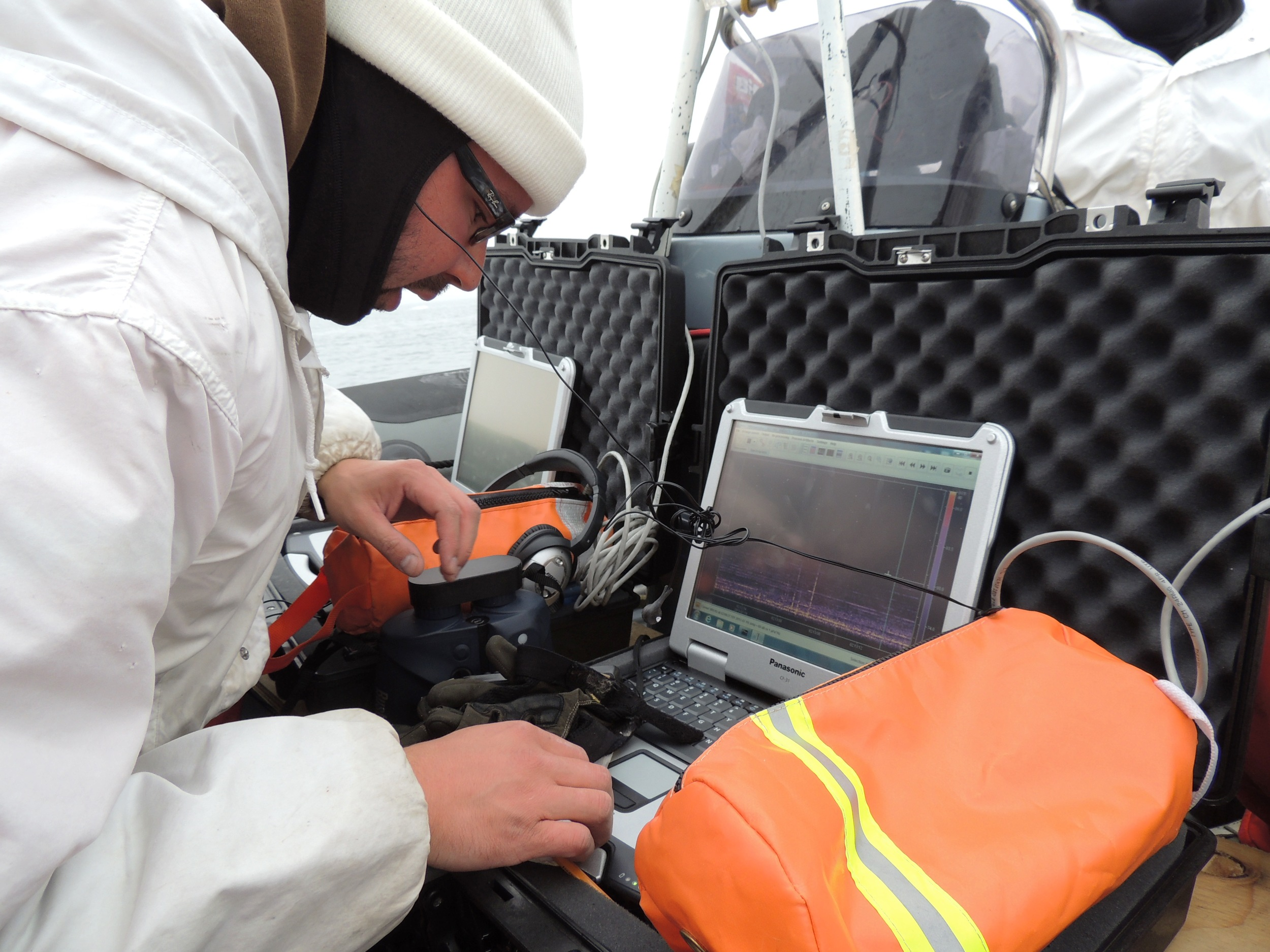 Passive acoustic monitoring (PAM) operator in the field detecting marine mammal calls