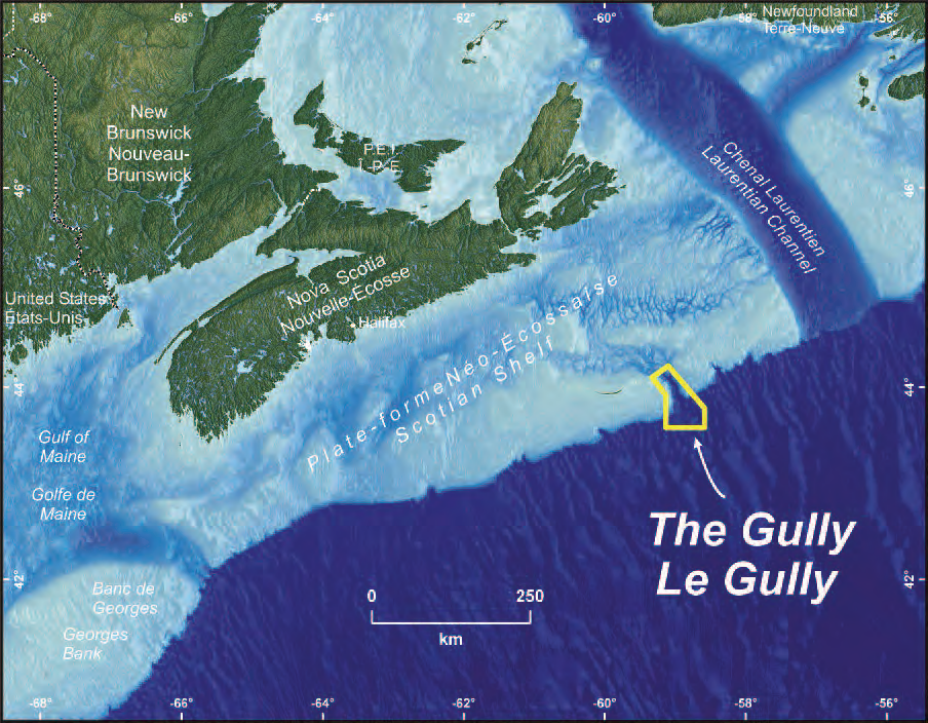 Image from  Department of Fisheries and Oceans Canada .