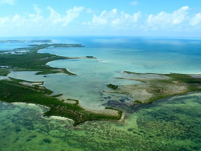 Caribbean Vacation - Belize Diving - Barrier Reef - Belize