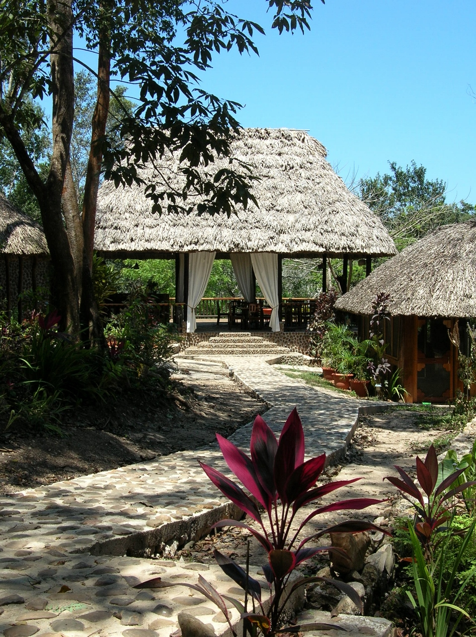 Table Rock Lodge - Belize Jungle Lodges -Cayo District - All Inclusive Vacation Packages to Belize - SabreWing Travel
