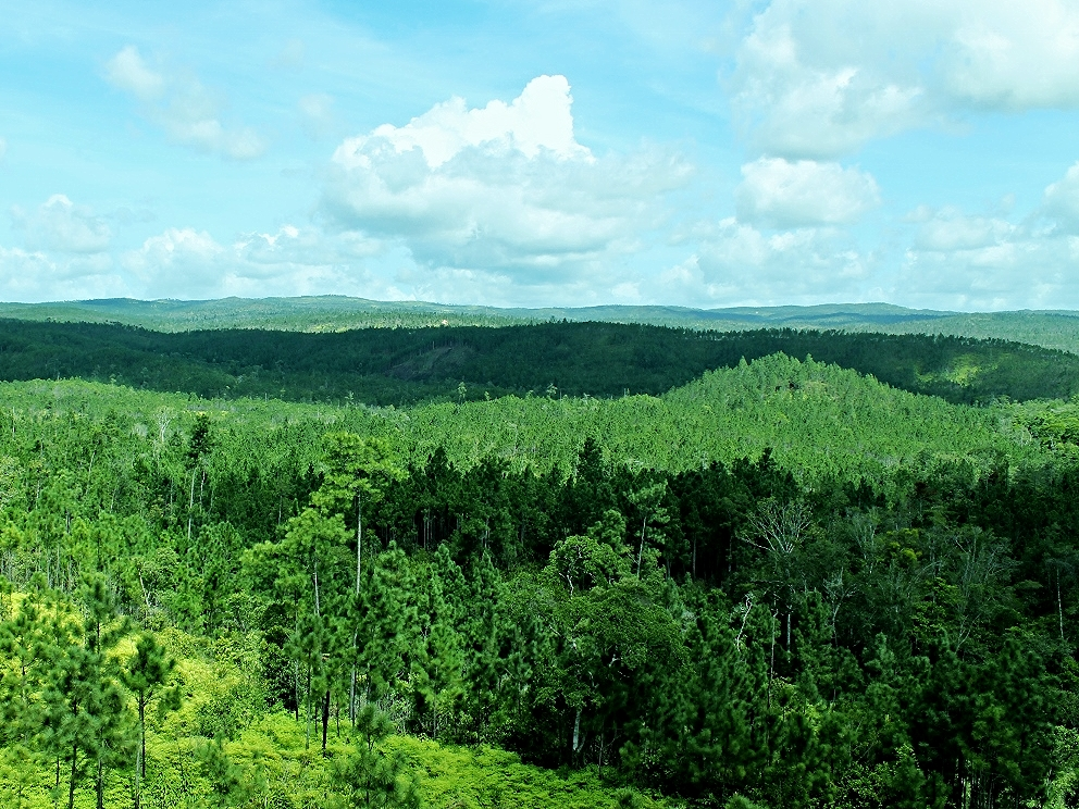 Maya Mountains - Mountain Pine Ridge - Belize Jungle Vacation - Belize Vacation Packages - SabreWing Travel