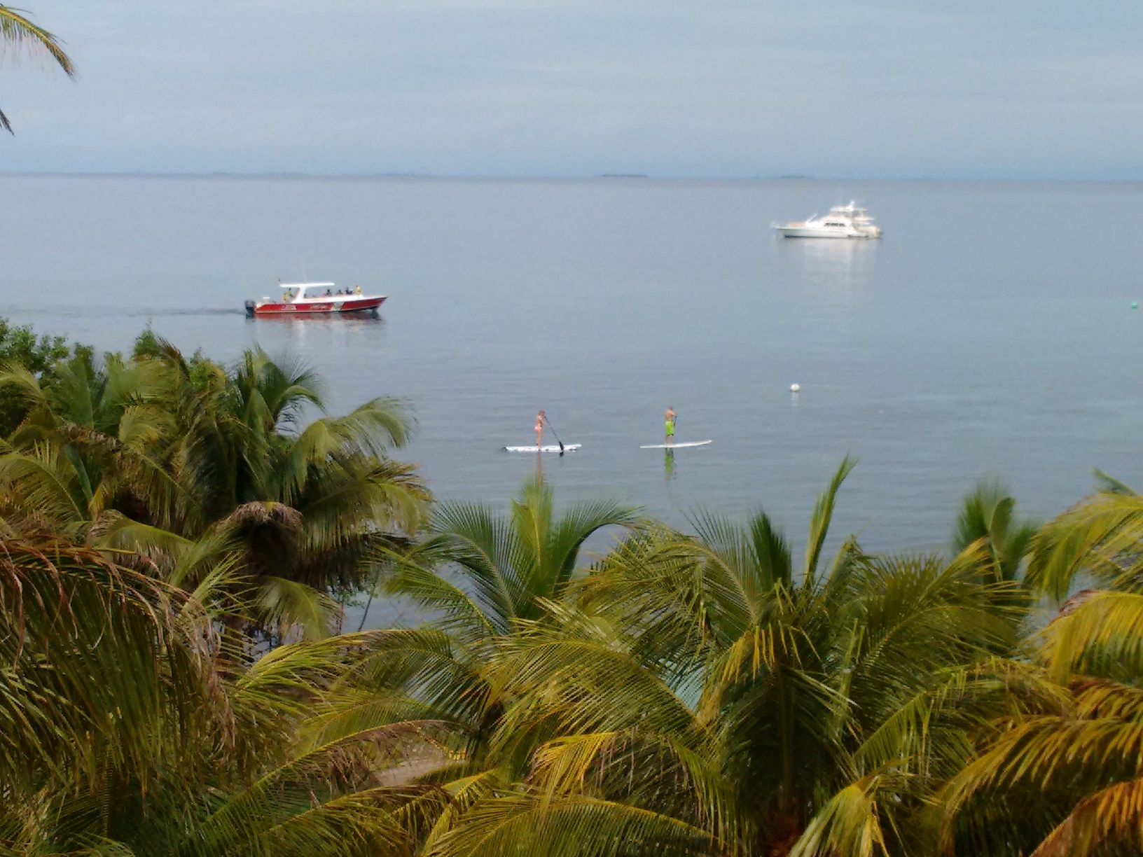 Paddle borders, snorkeling tours, and private yachts at Hatchet Caye Resort
