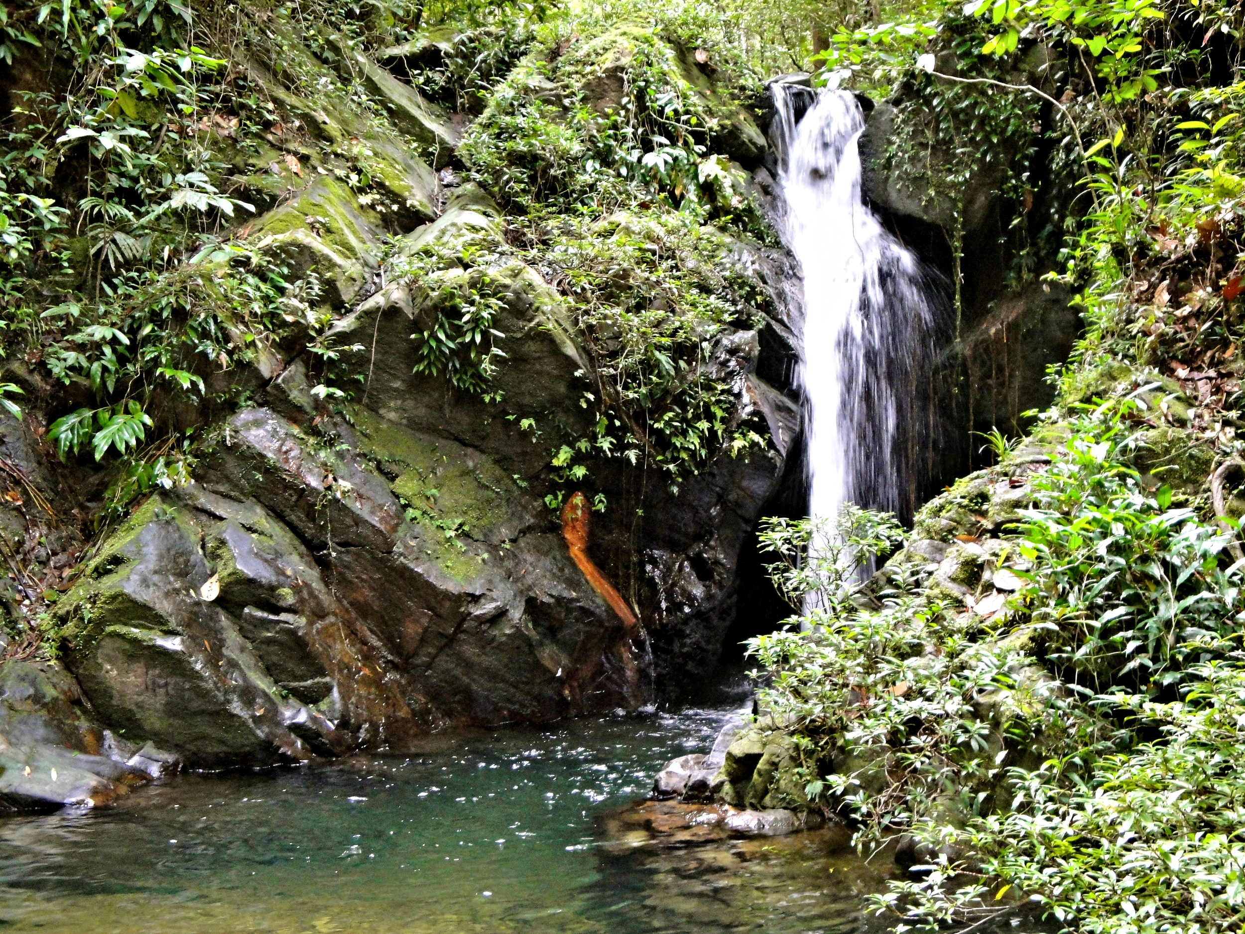 Several waterfalls lie hidden in the forests of the Cockscomb Basin