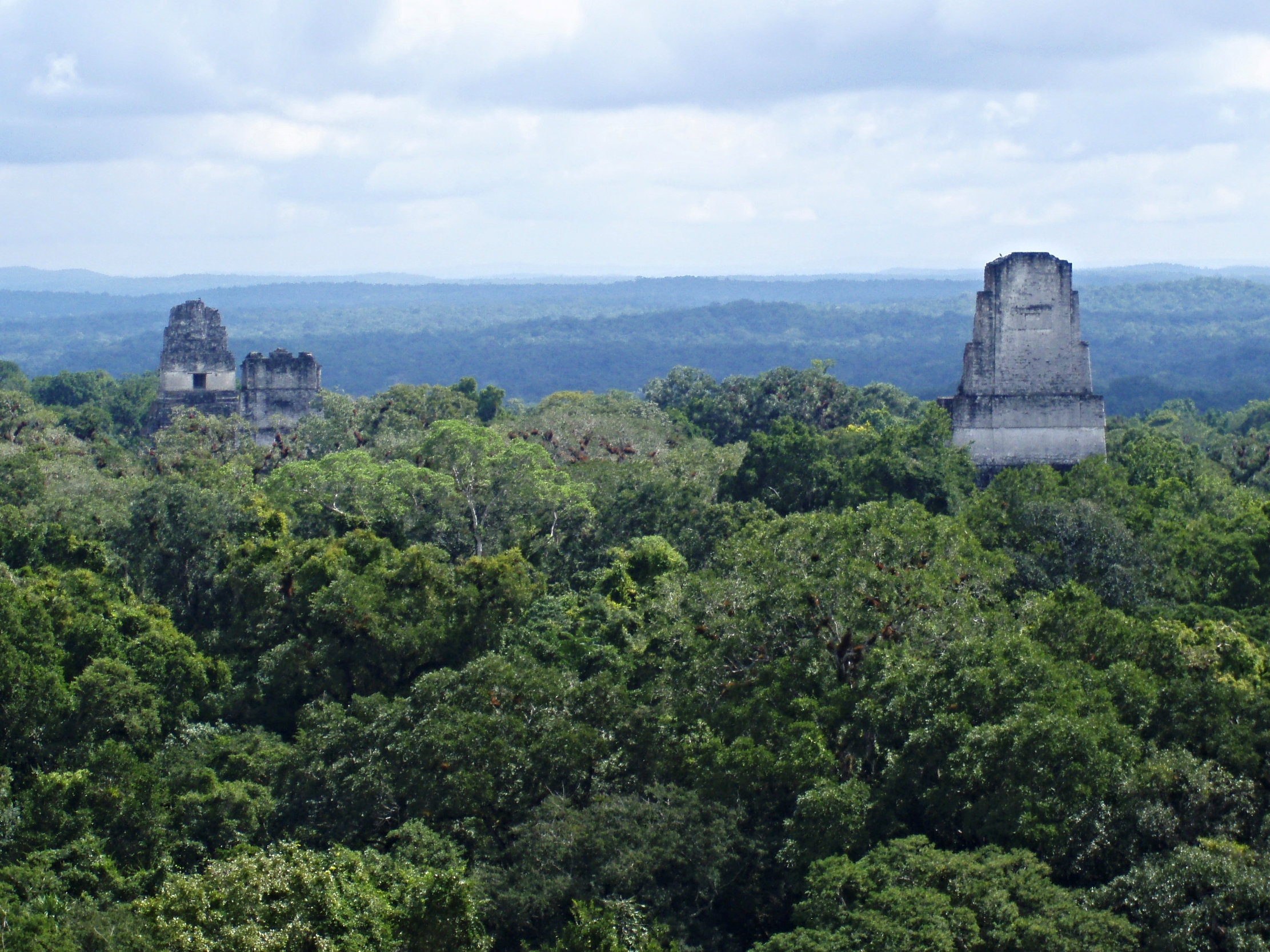 The view of the Temples One, Two and Three as seen from the top of Temple Four at Tikal