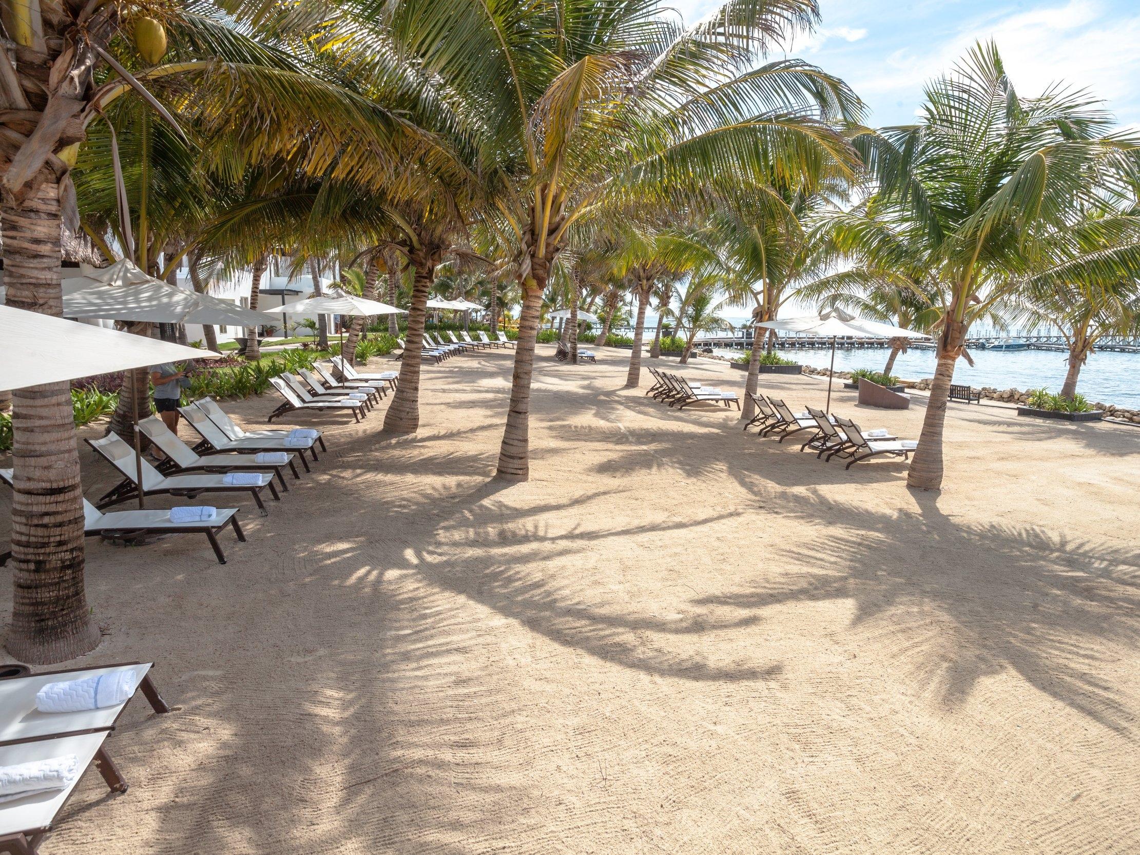 Beach at Las Terrazas Resort