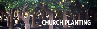 church-planting-icon.jpg