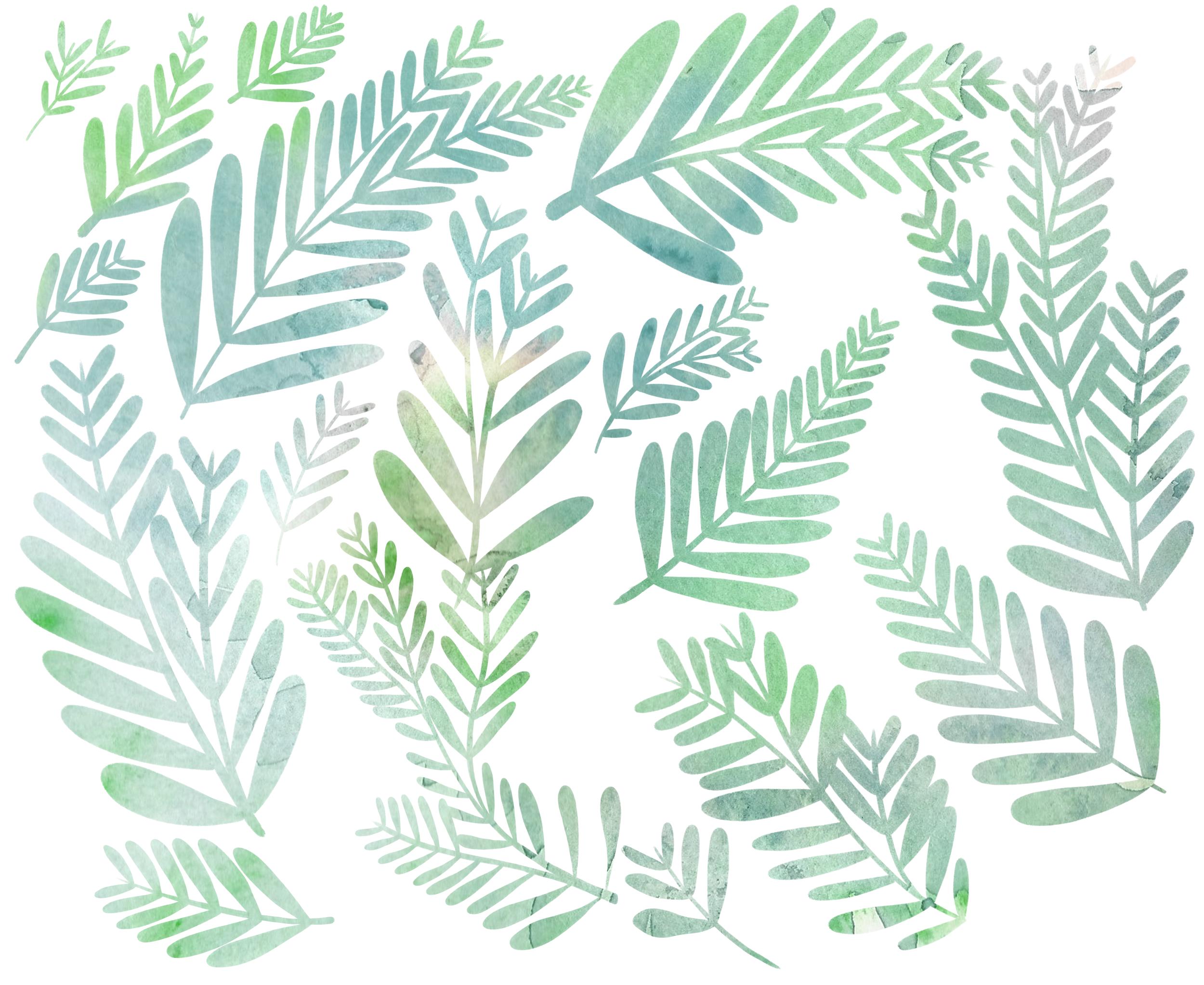 Leaf-SketchWEB1.png
