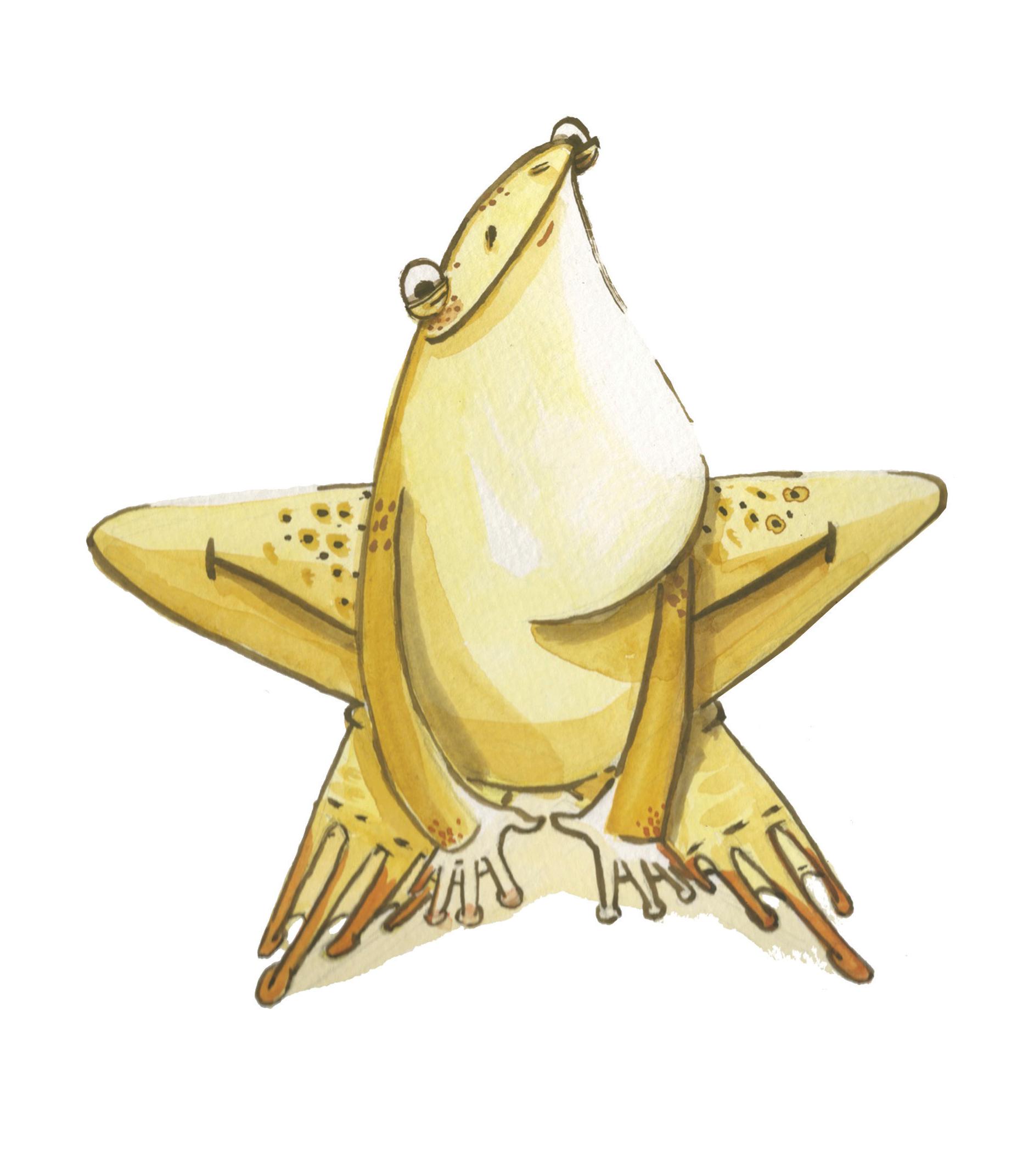 Frog-WEB.png