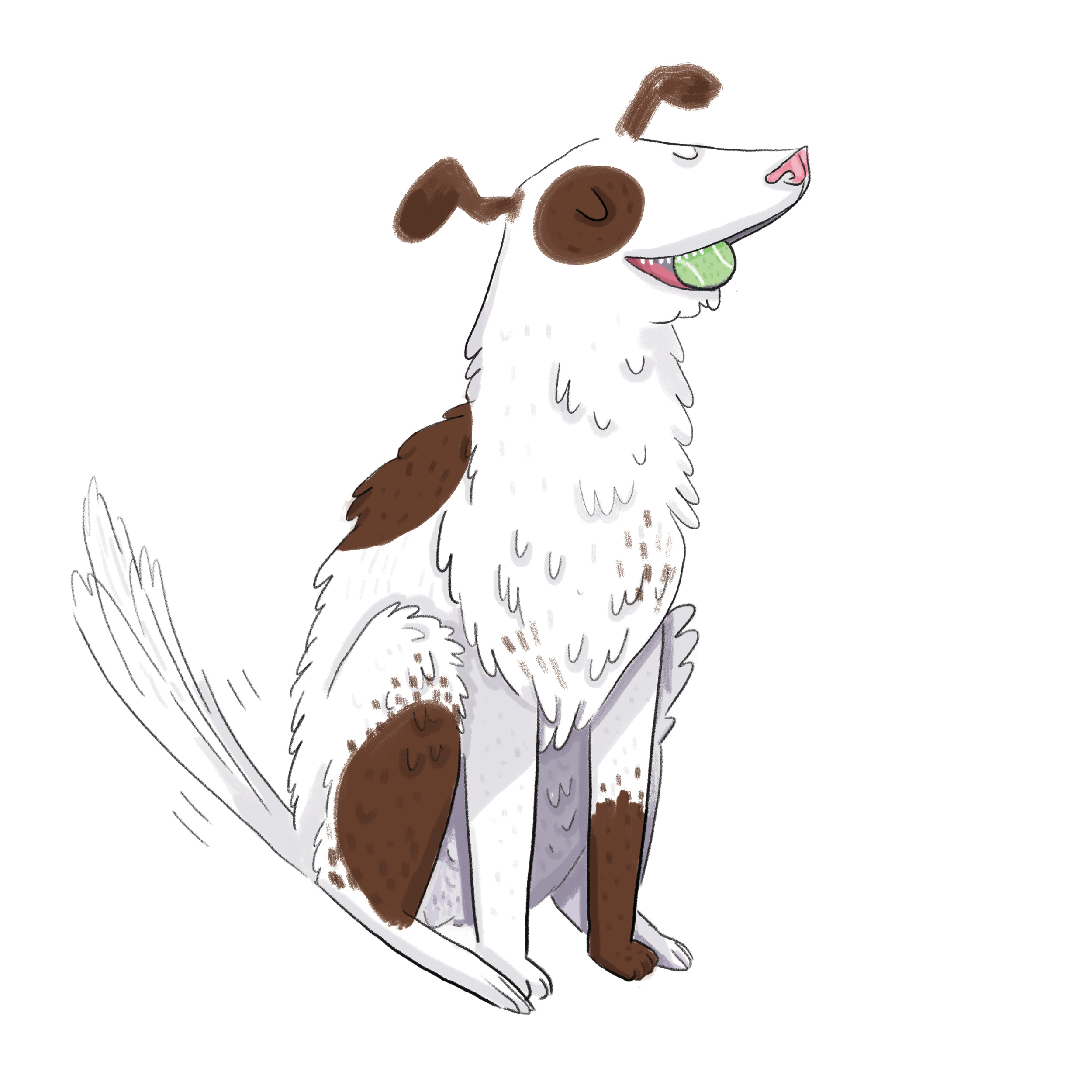 DOggie-Web.png