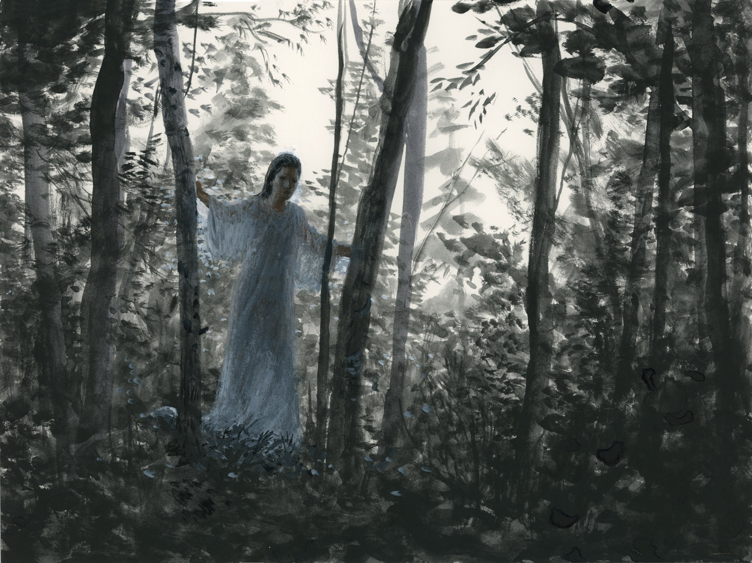 The Forest Study