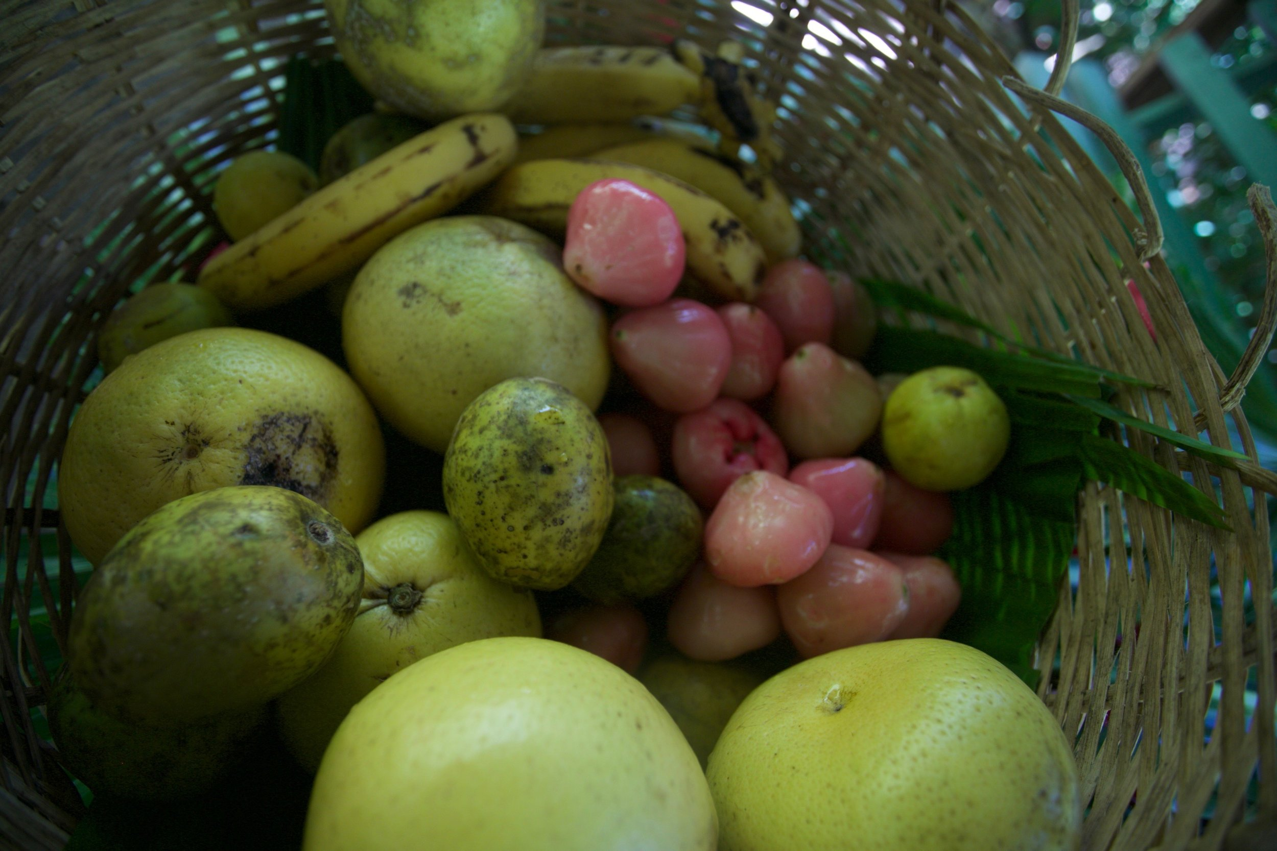 All the island fruit we we were tasting, oh there is nothing like it:) Photography Courtesy of The Aisle Photography