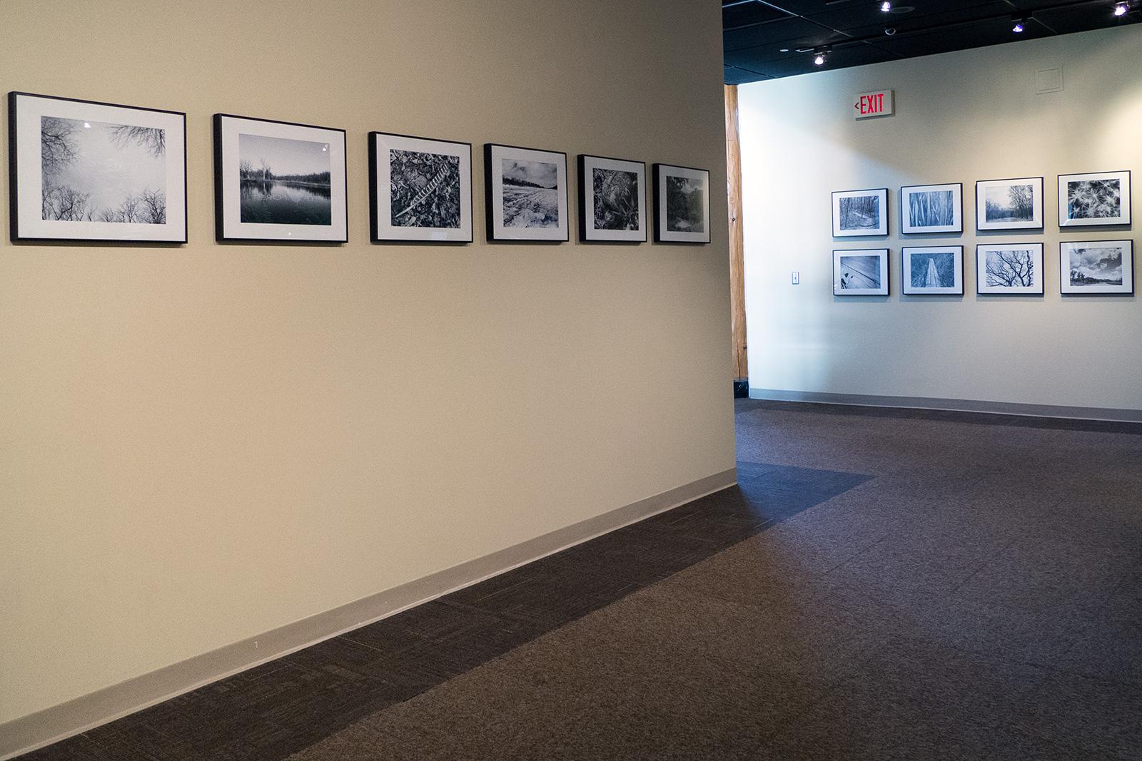 exhibition3.jpg