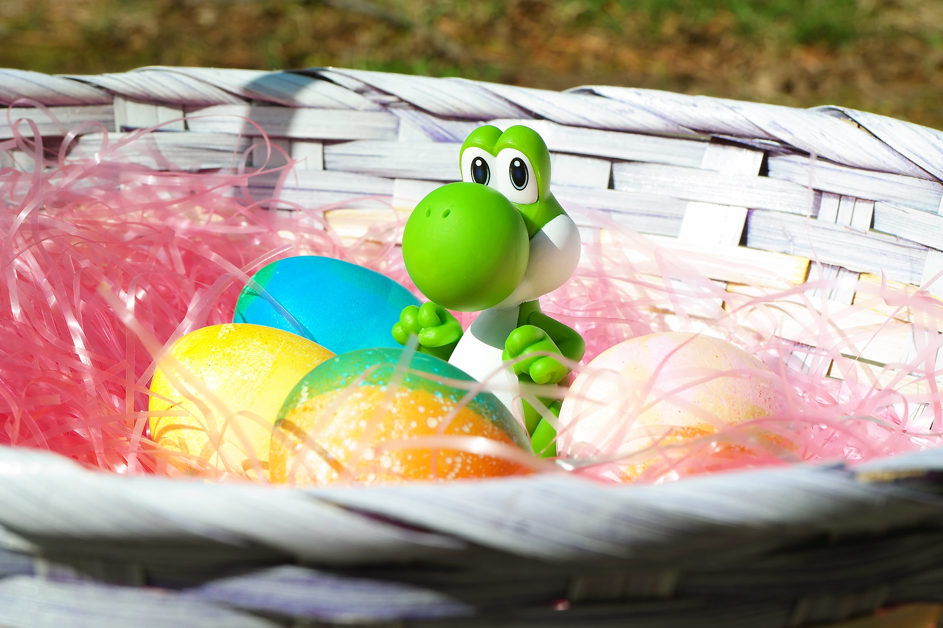 Nintendo Yoshi Easter Photo - Raymond Strazdas