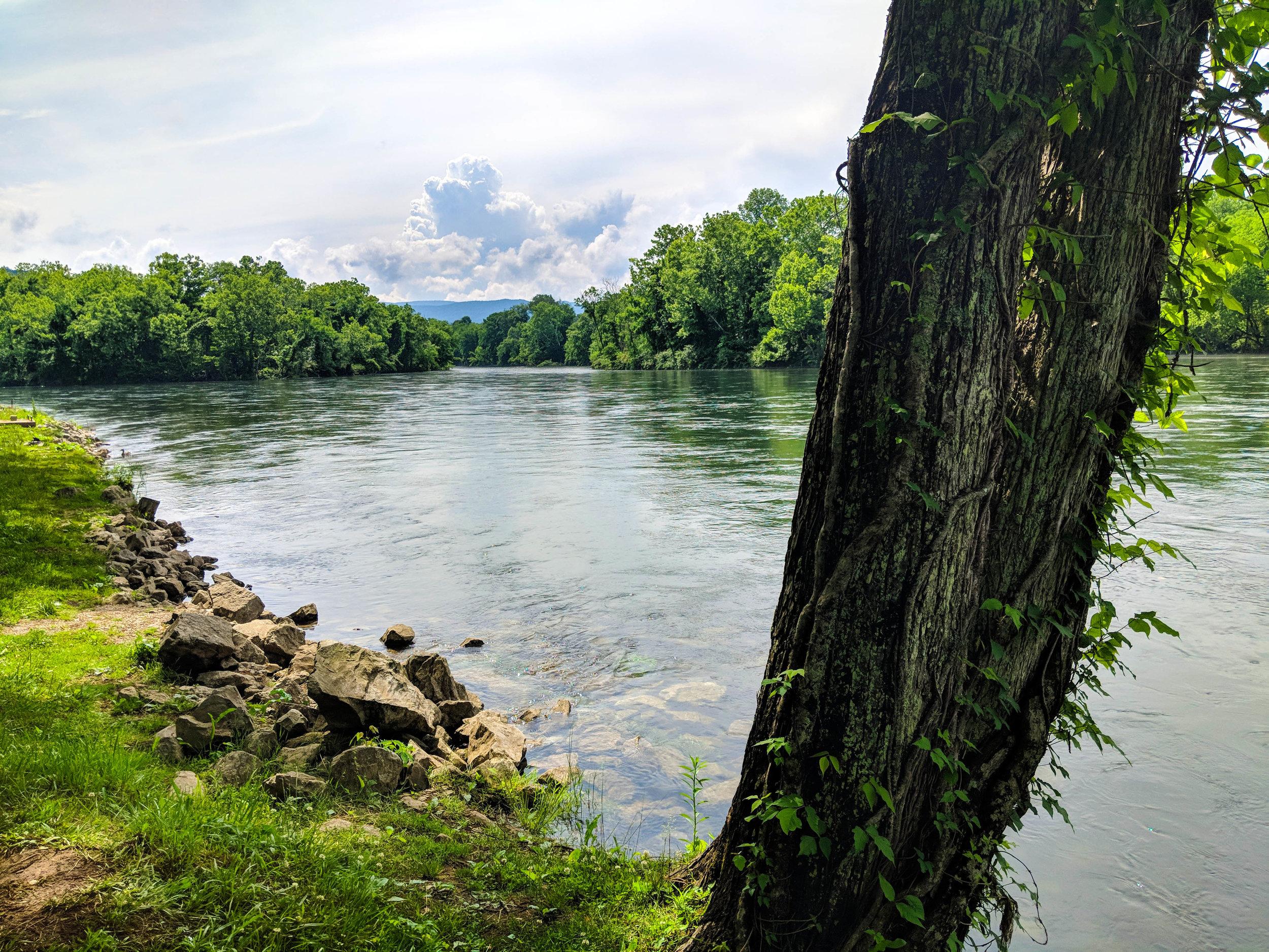 Clinch River Day Shot.jpg