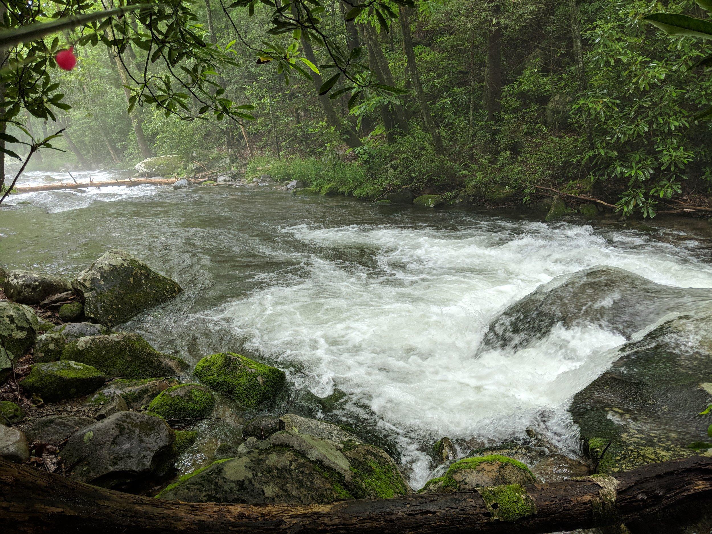 Cosby Creek 2.jpg