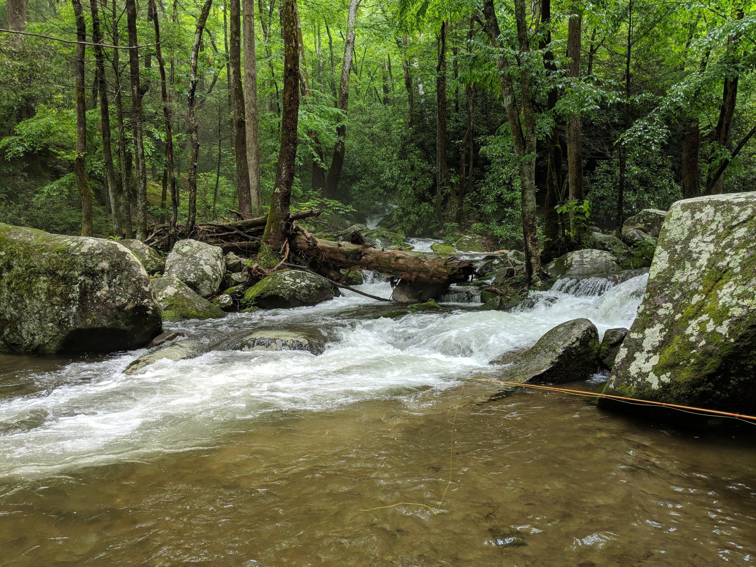 Cosby Creek.jpg