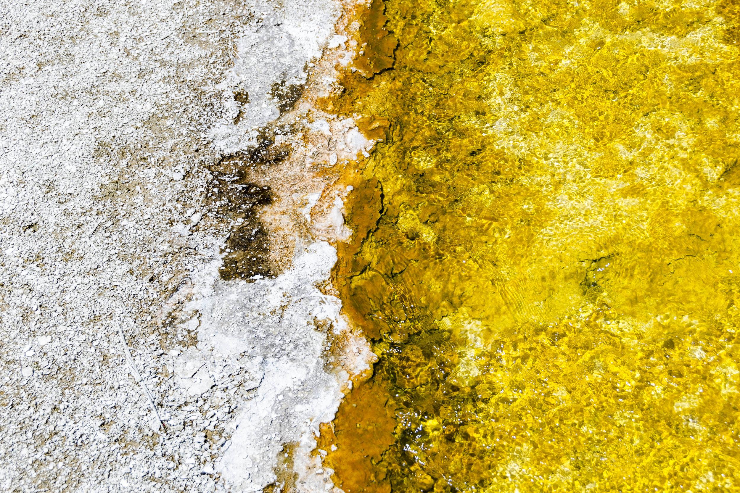 Yellowstone Texture - 20180613_0113.jpg