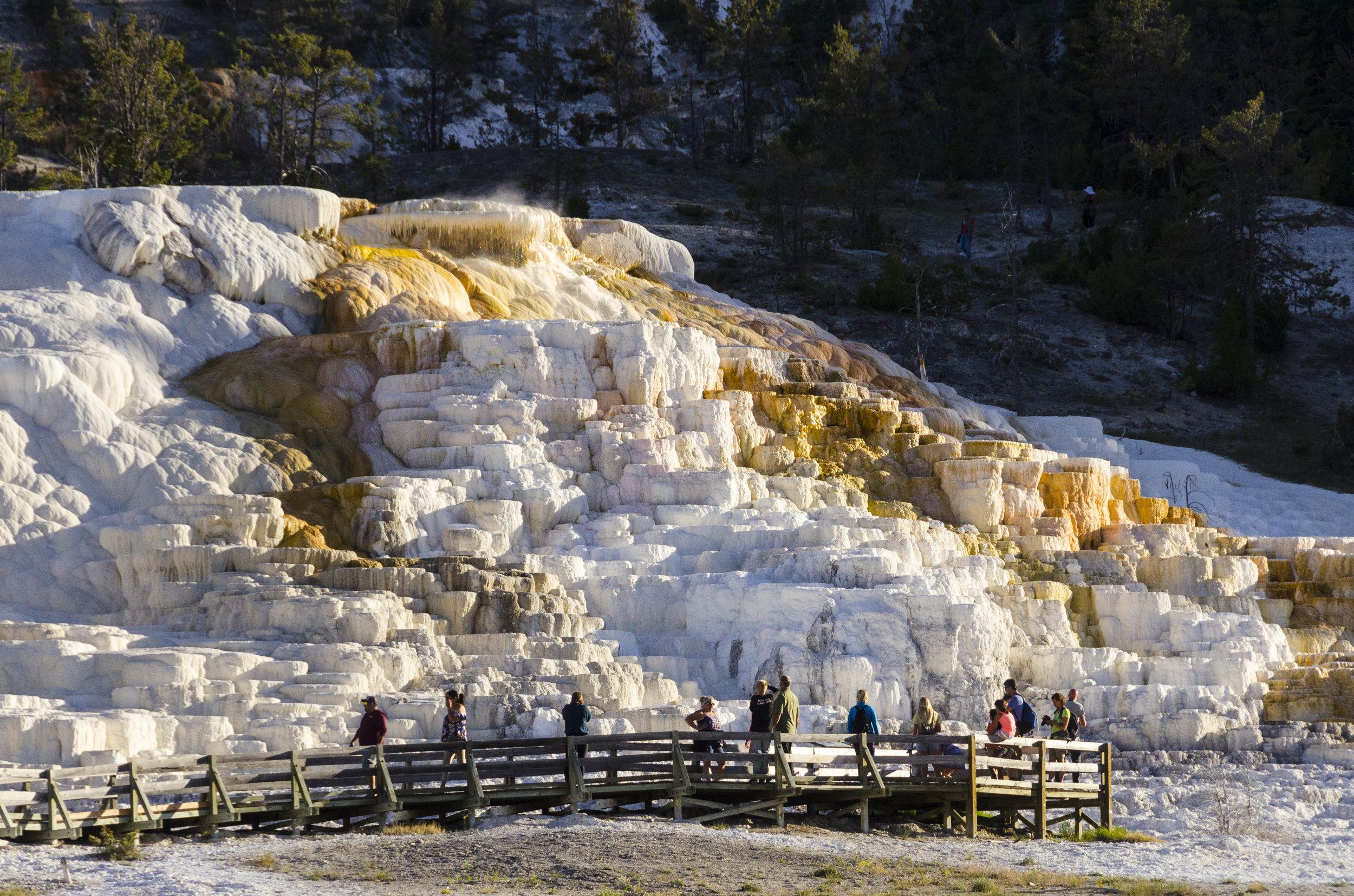 (need name) Mammoth Springs - 20180614_0027.jpg