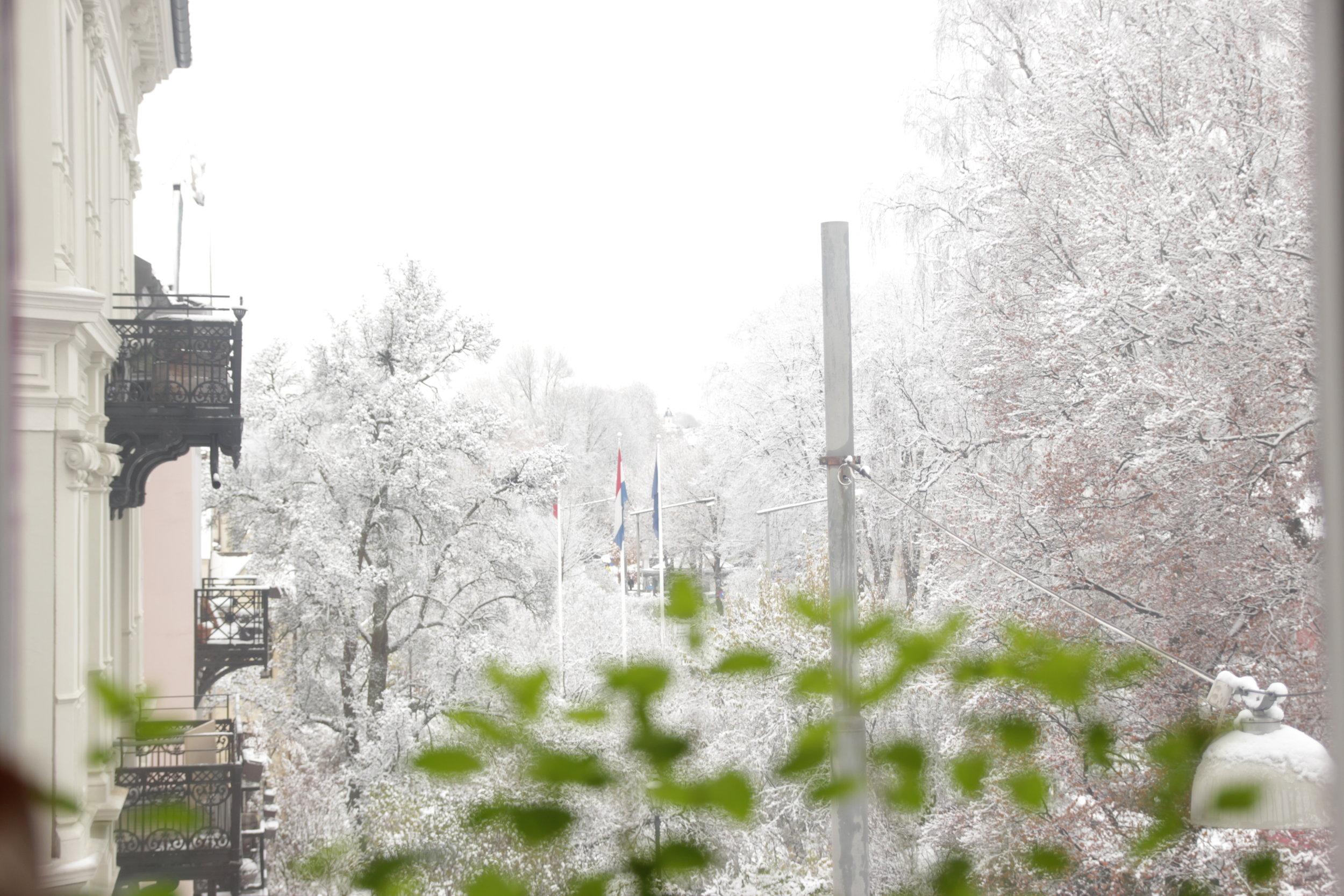 First Day of Snowfall. Oslo, November 2017.