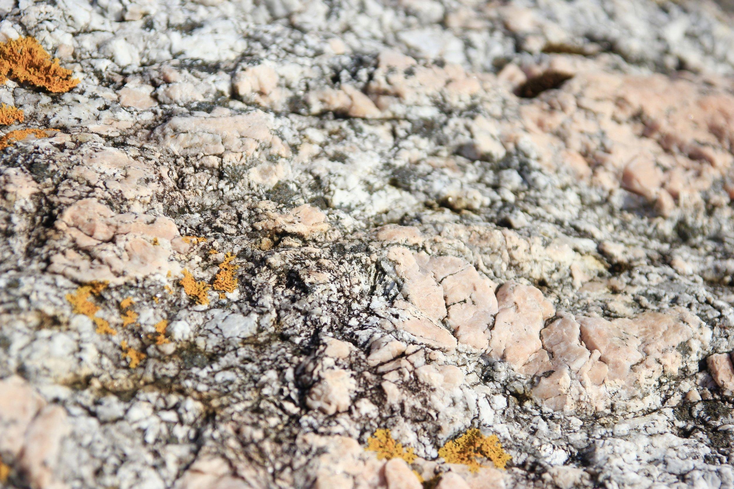 Pink rocks with ochre lichen.