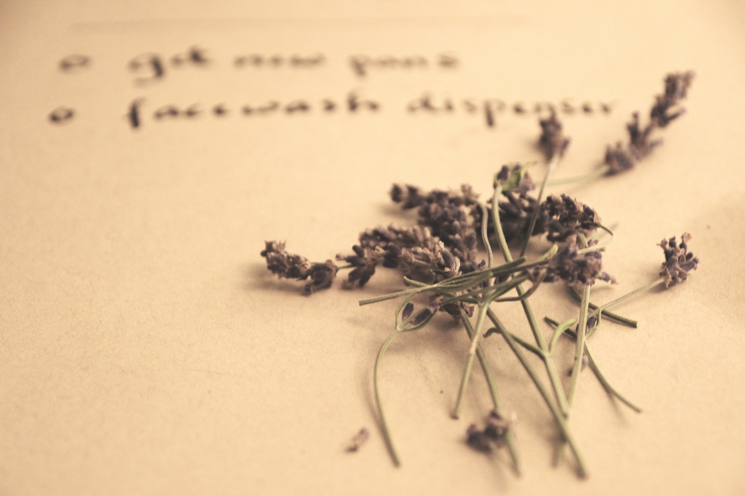 Lavender Aromatherapy: promotes stability and a sense of calm.