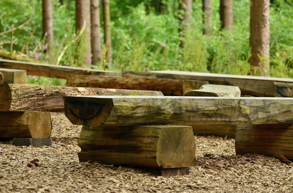school benches in the woods.jpg