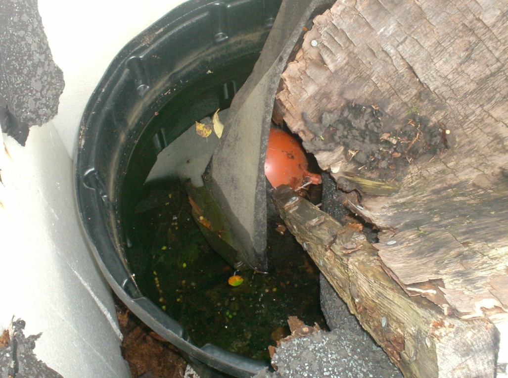 Previously undetected water tank. Contaminated water from this tank was found to supply drinking water and showers!
