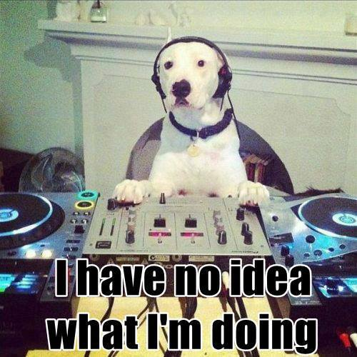 Some DJ's aren't worth throwing a bone. Do your research and ask the right questions.