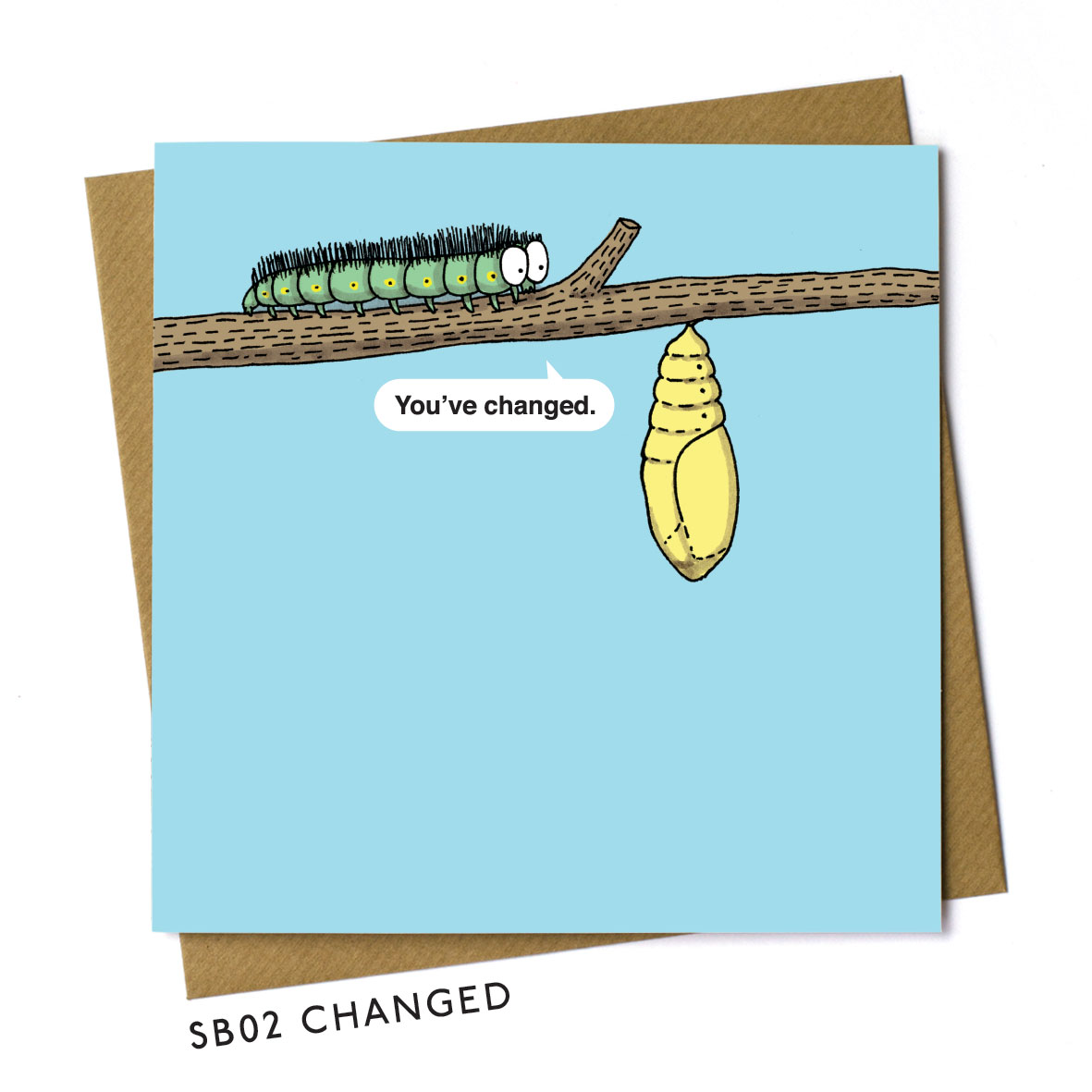 SB02-CHANGED.jpg