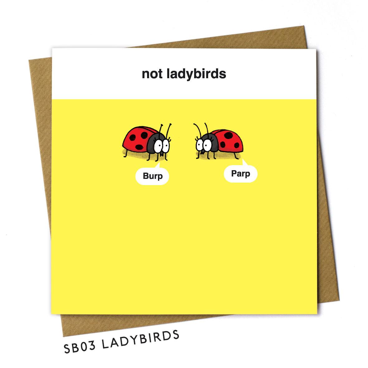 SB03-LADYBIRDS.jpg