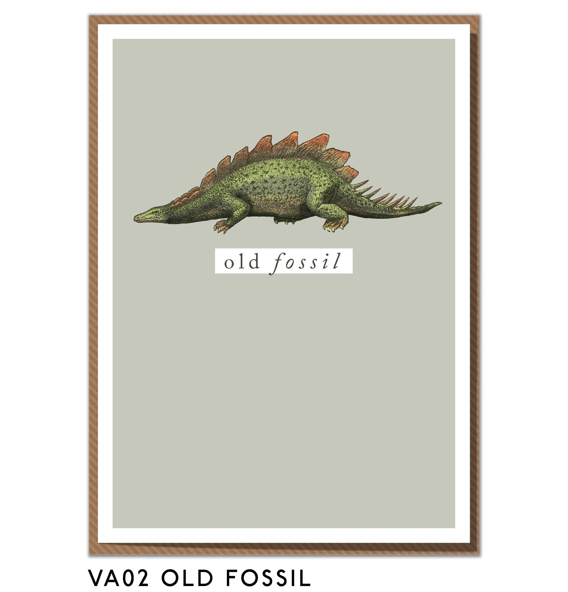 VA02-OLD-FOSSIL-.jpg
