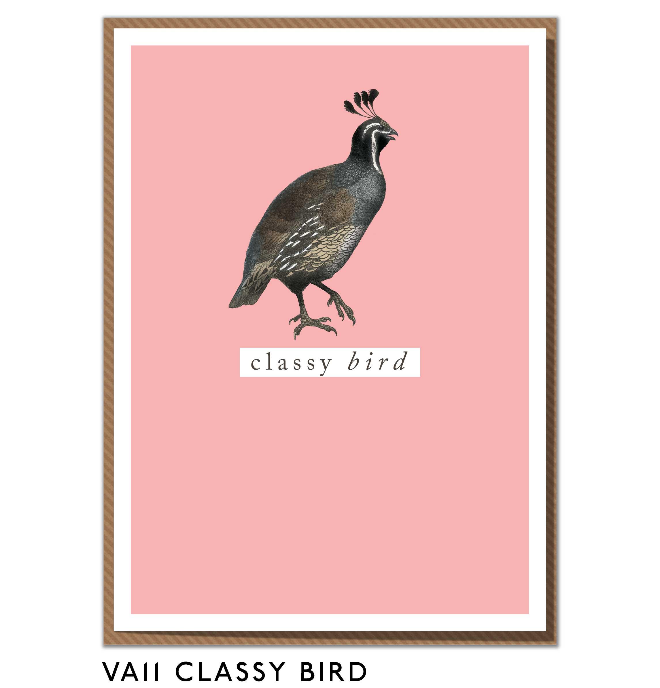 VA11-CLASSY-BIRD.jpg