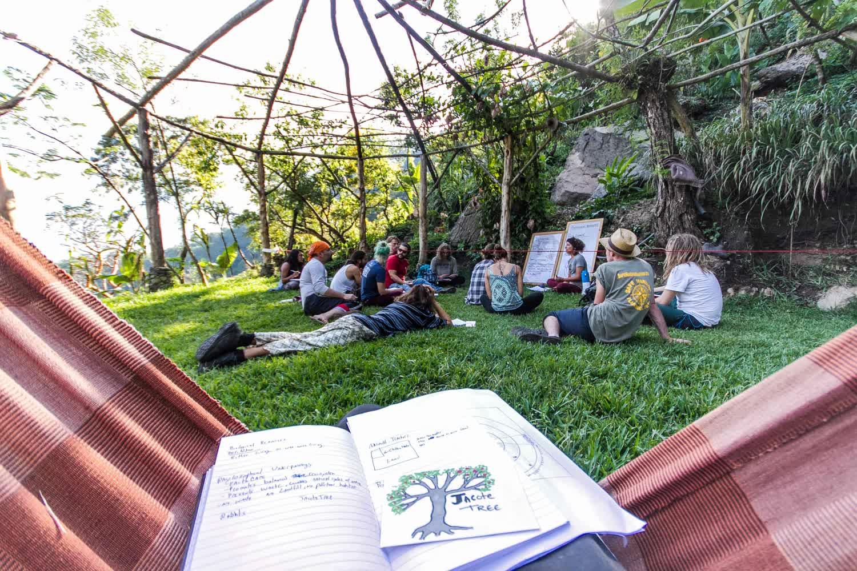 Outdoor hammock space