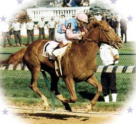 The poem below was written for Ferdinand (picture above), the 1987 Kentucky Derby winner, who was sent to slaughter in Japan.