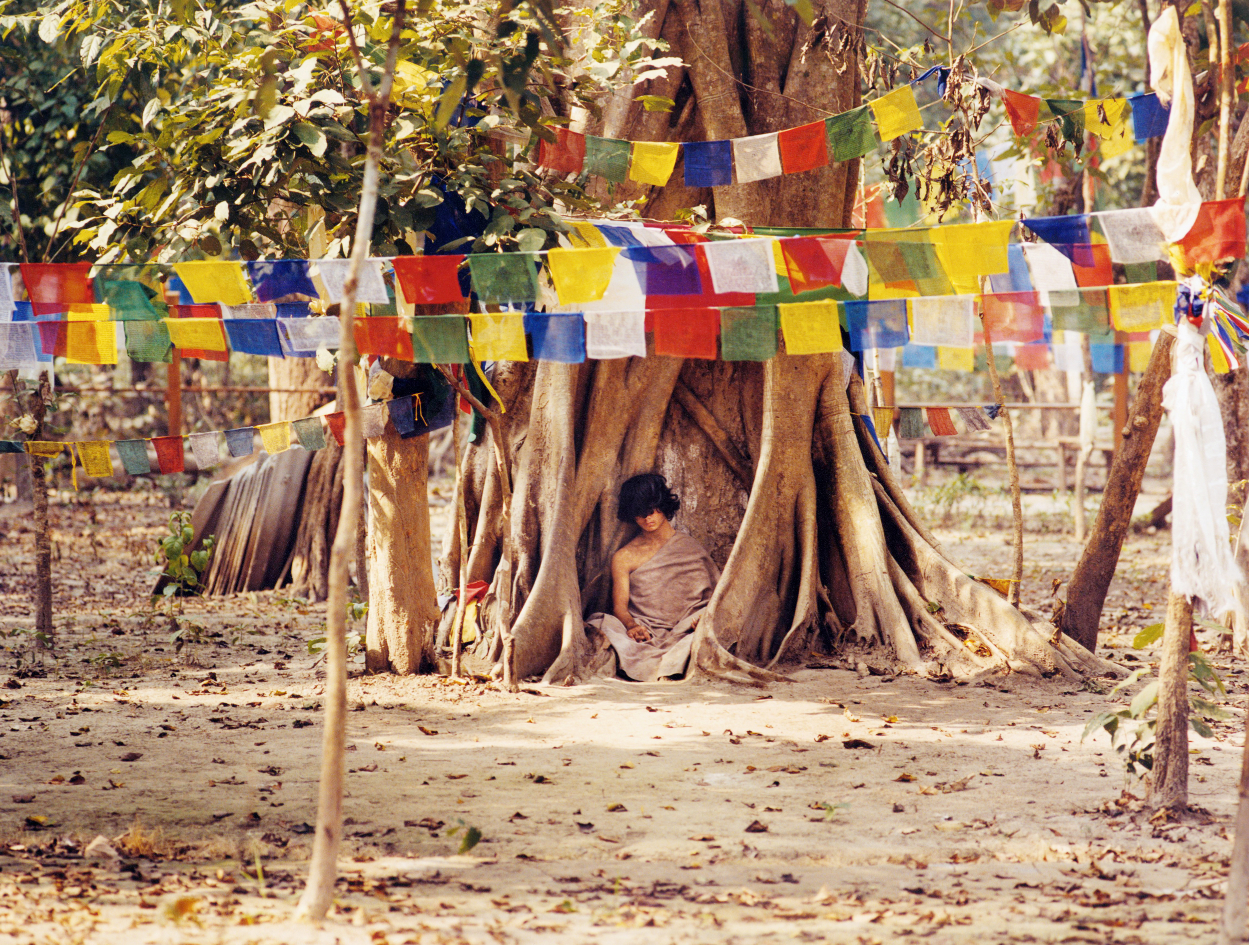 """The """"Buddha Boy"""" Ram Behadur Bamjan - rumored to be the Buddha reincarnate, this sixteen-year-old boy meditated motionless under a pepal tree in a forest in Southern Nepal for nearly 9 months in 2006 - Bara Region, Nepal"""