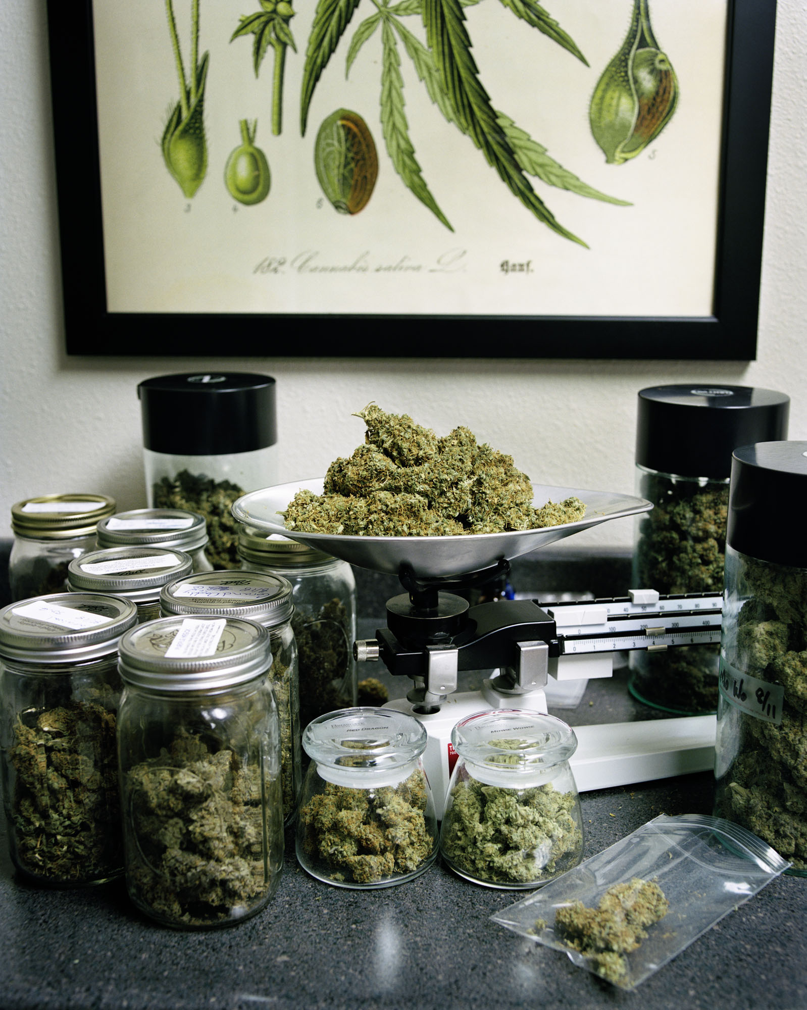 Medical Marijuana - Denver, CO