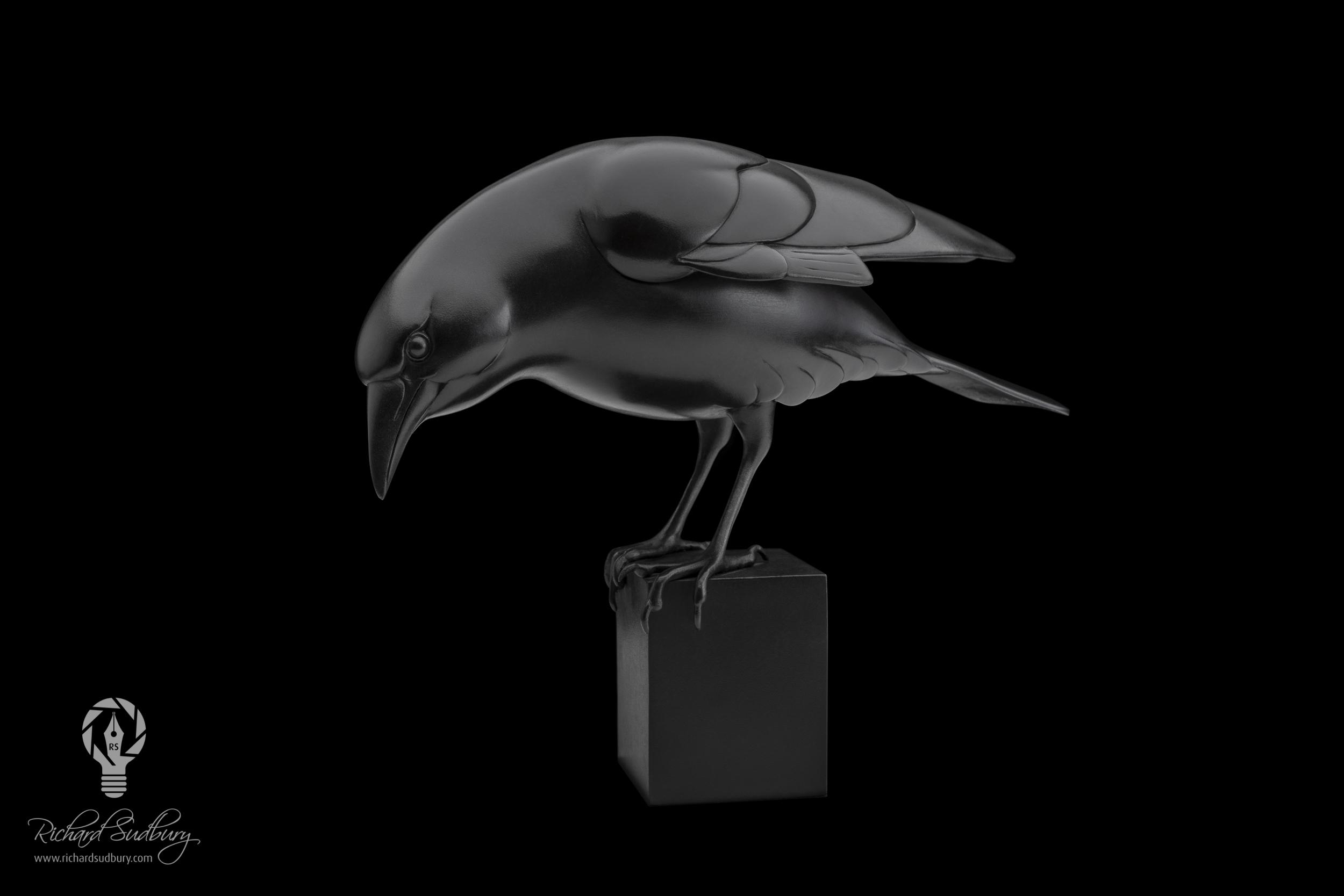 Adam Binder's Crow