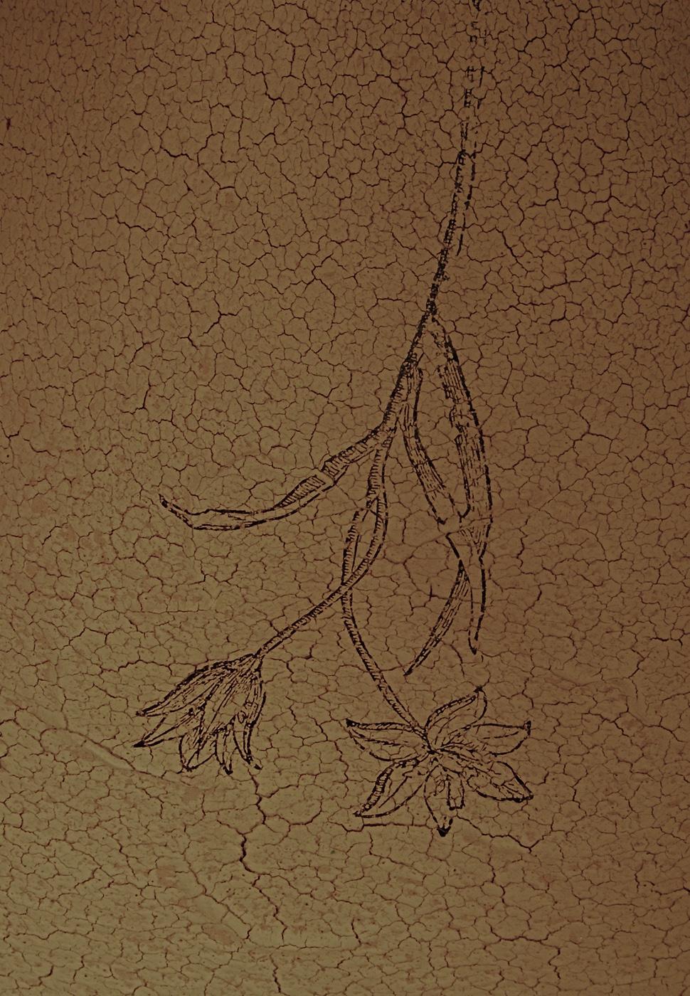 Floralis (detail)