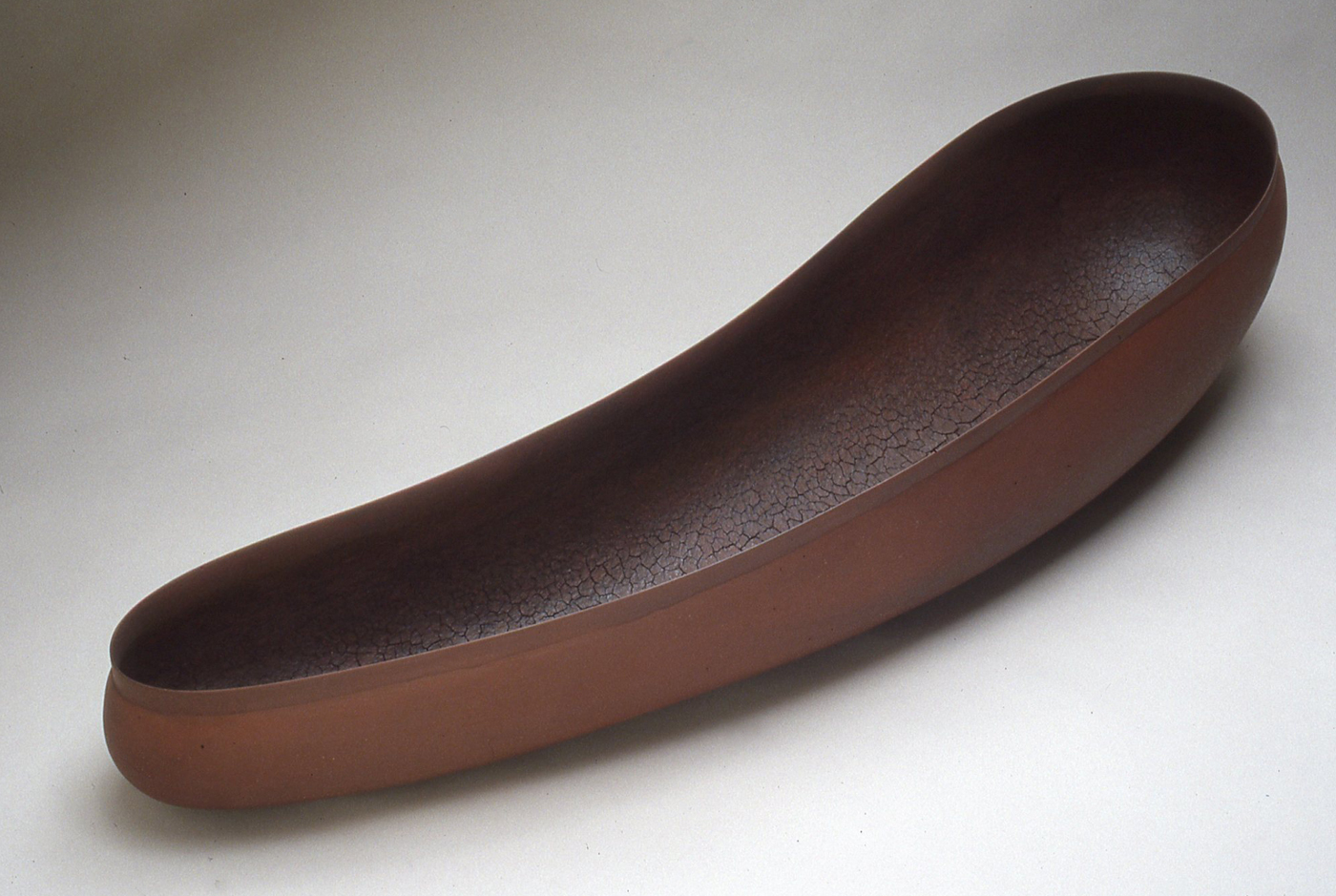 Diatom, 2004