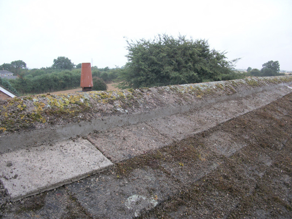Ridge repairs by West Design and Build of Hedon, East Riding 10.jpg