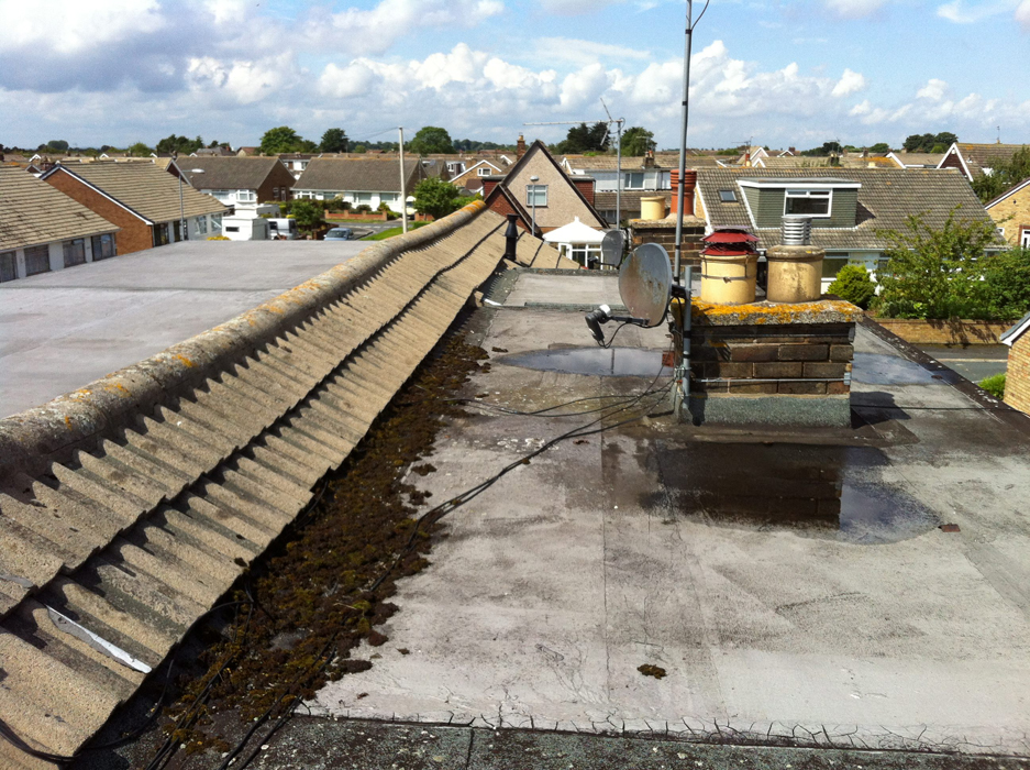 Old roof before New Flat Roof by West Design and Build of Hedon-East Riding 01.jpg