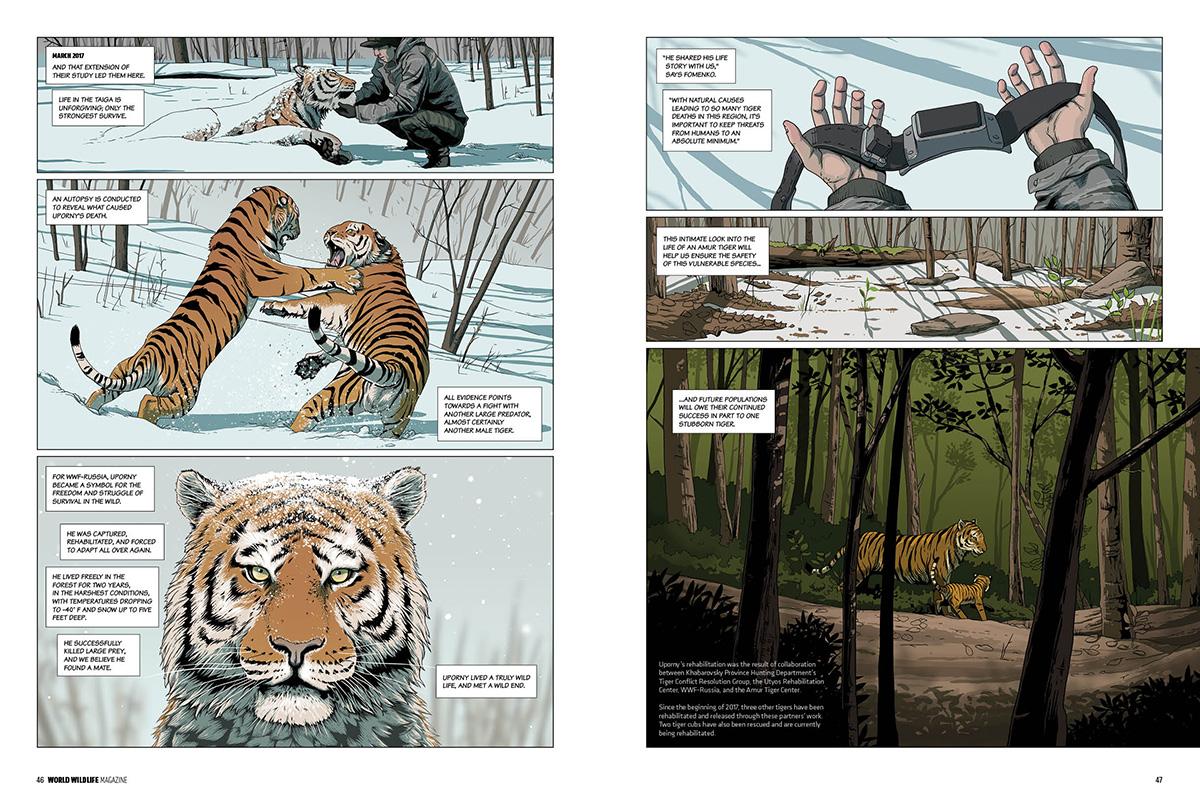 WWF_Uporny_spread4.jpg