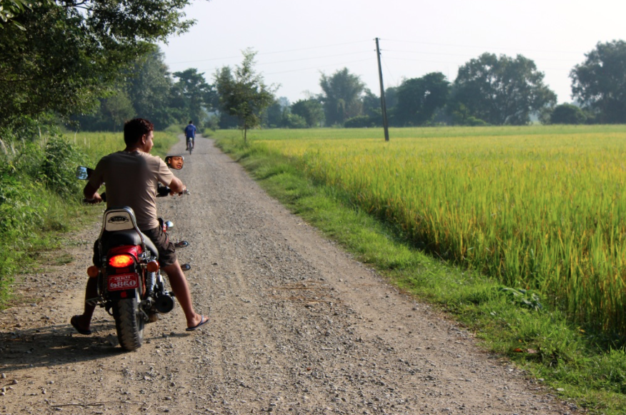 Feeling adventurous? Rent a motorbike and explore surrounding rice fields.