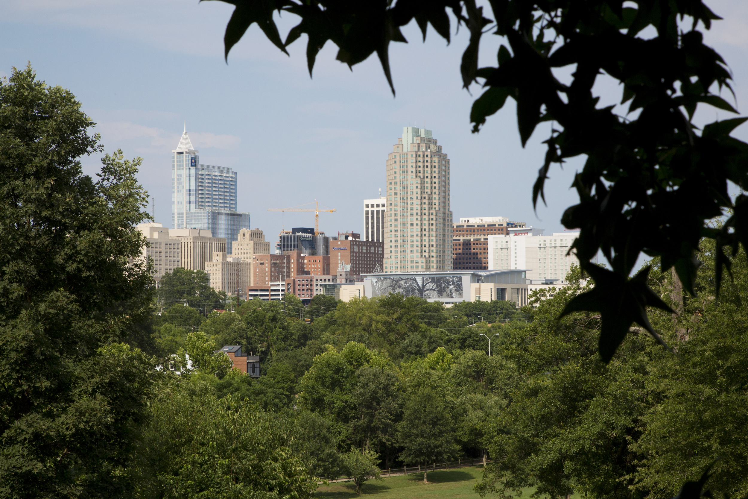 Monday: The Raleigh skyline seen from the Dorothea Dix campus. In an interview Monday, July 14, 2014, Mayor Nancy McFarlane voiced her frustrations about the slow negotiations over the Dorothea Dix property, the former psychiatric hospital campus that the city wishes to purchase from the state to use as a public park.
