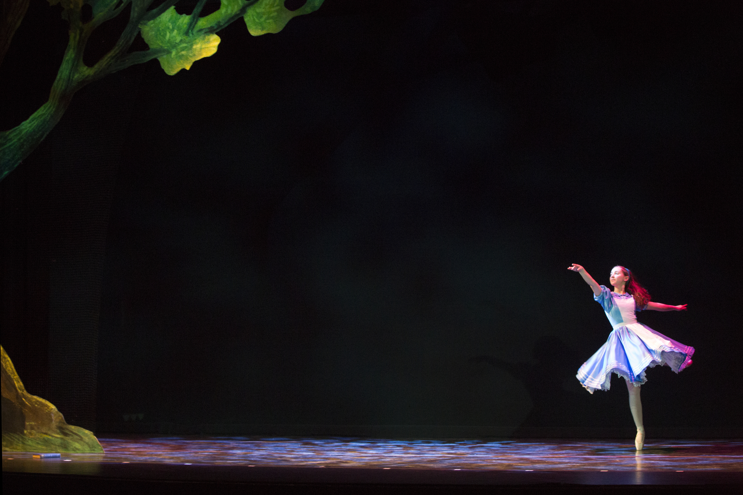 20150406-vn-ballet-ss-232.jpg