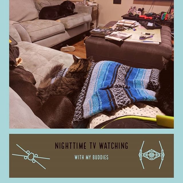 I love animals. They bring me so much joy, especially when they join me on the couch. They help with dealing with life. The ups and downs, they're always there.  How many animals do you have? Share your stories on how your animals make your life more complete.. --- --- --- --- #catsofinstagram #dogs #starwars #tabletopgames #starwarsedgeoftheempire #winteriscoming #pets #animals