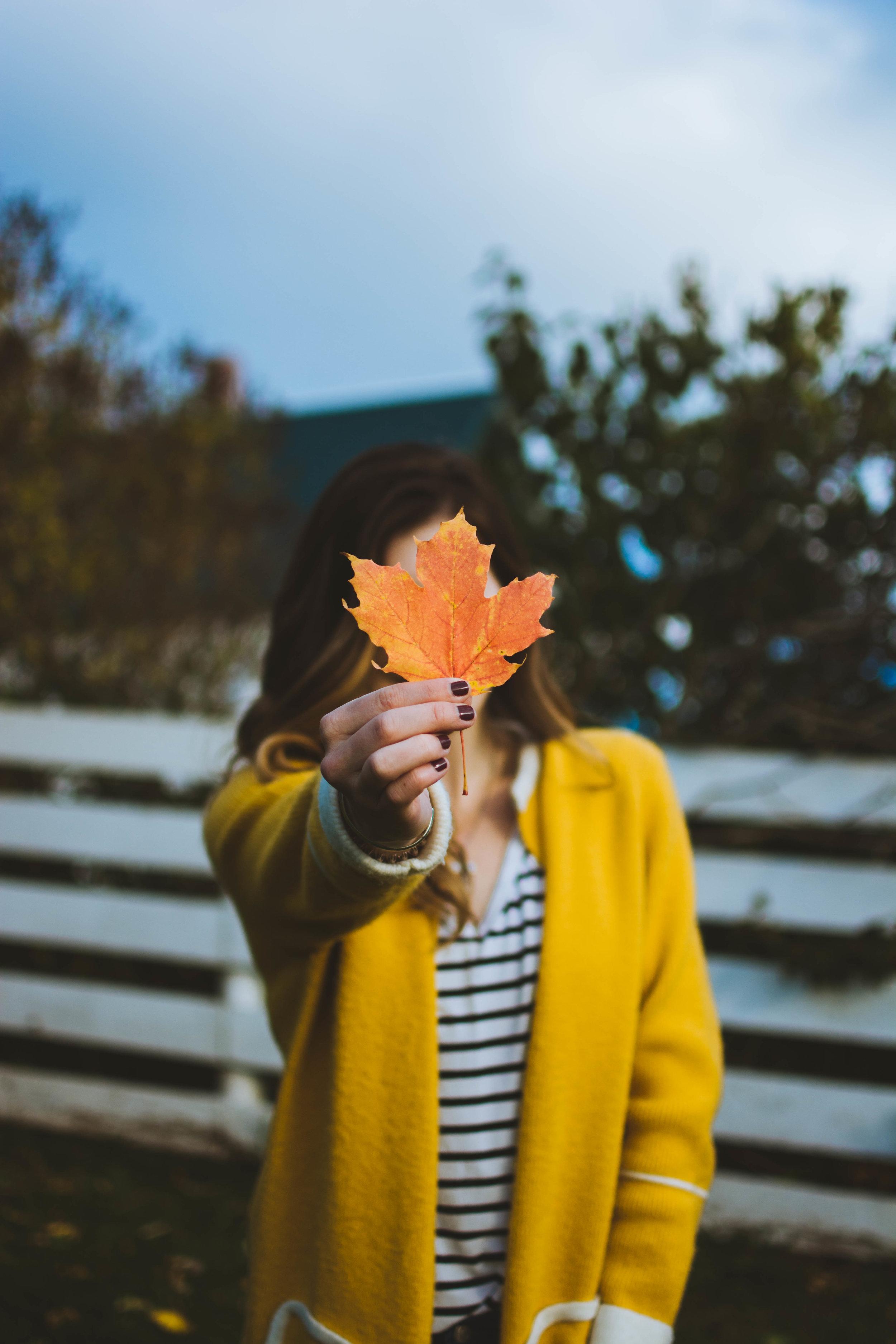 Autumn in Prince Edward Island