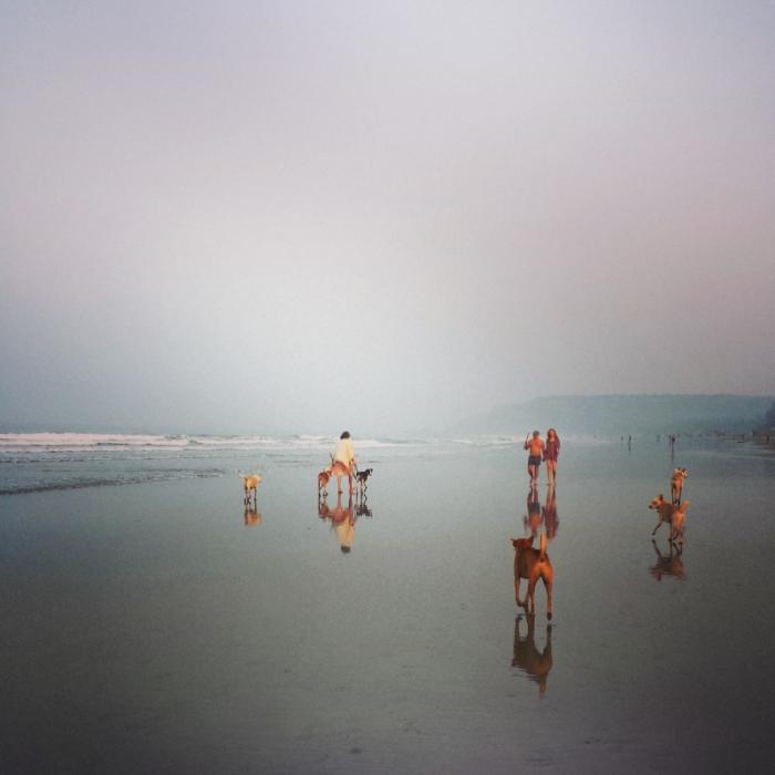 Goa, India. (photo: Lyn Girdler) Love Nomadic