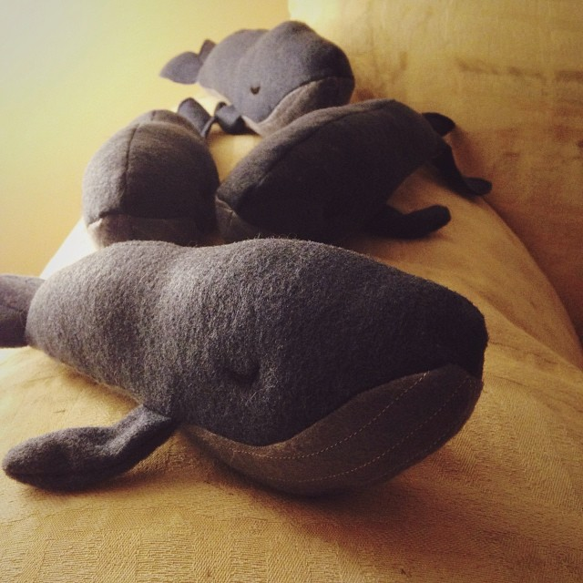 Plushy lonely whales! Brought to fluffy life by  Moon Milk
